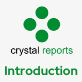 Crystal Reports: Introduction (Level 1)
